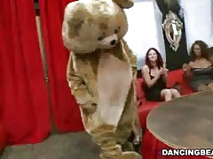 Dancing Bear cock shaking style