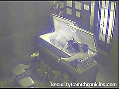 Security Cam Chronicles