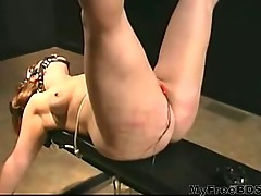 Harsh Bdsm Caning Electriciy In Pussy And Waxed